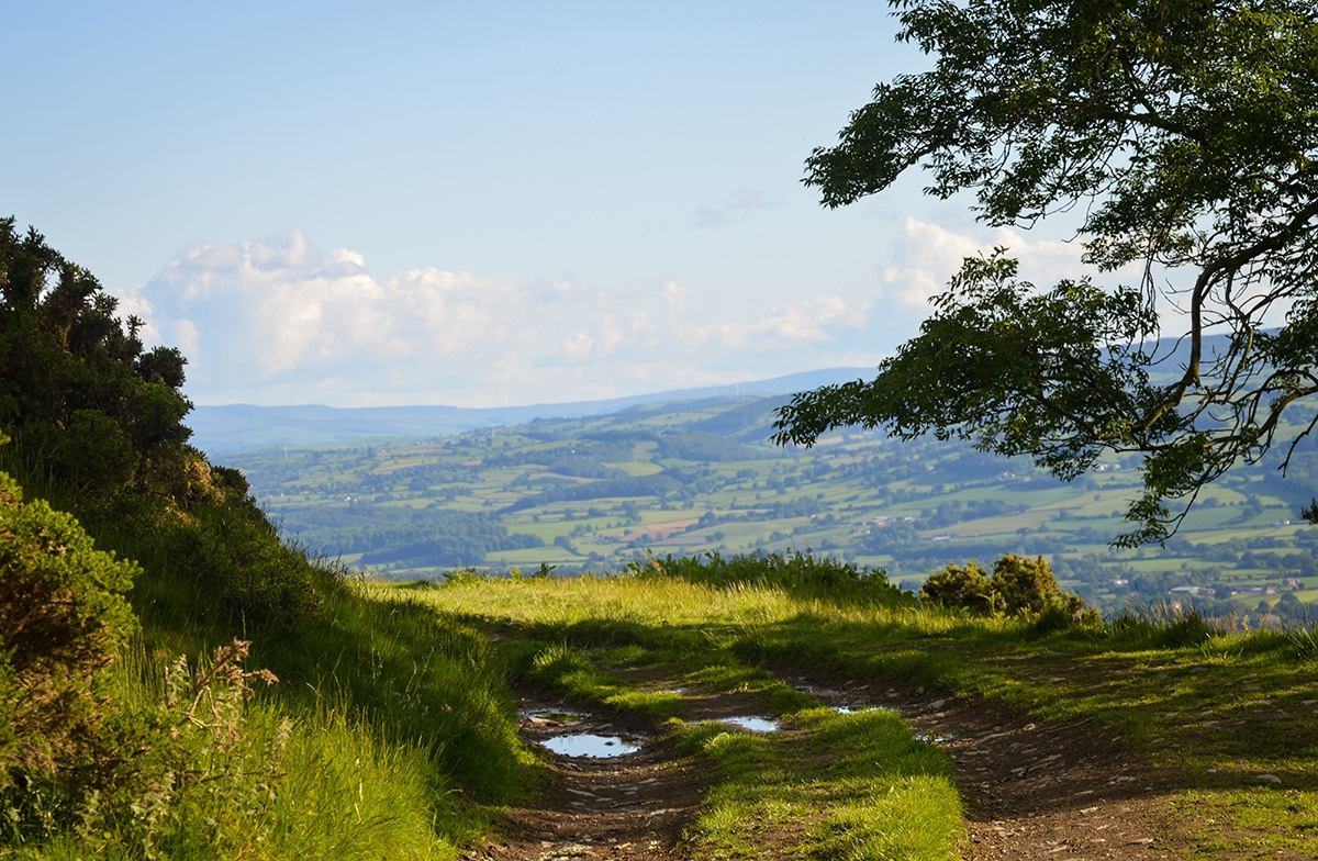 Best Places to go Mountain Biking in North Wales